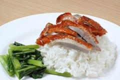 nurkuje ryż Zdjęcia Royalty Free