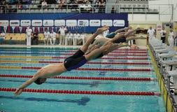 Nurkuje w basen na początku pływania Obraz Stock