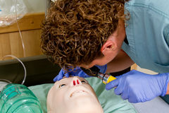 Nurse checking pupil reaction on mannequin Stock Photography