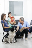Nurse Crouching By Pets And Owners In Waiting Area Stock Images