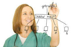 Nurse Drawing Leadership Chart Stock Images