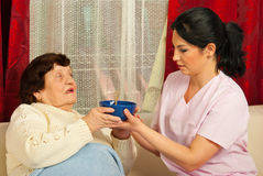 Nurse giving bowl with soup to senior Stock Images