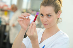 Nurse labeling blood in vacuum tube Stock Photos