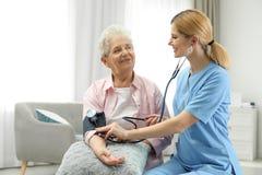 Nurse measuring blood pressure of elderly woman. Assisting senior people stock photography