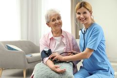 Nurse measuring blood pressure of elderly woman. Assisting senior people royalty free stock image