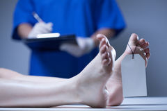 Nurse in a mortuary. Horizontal view of nurse in a mortuary Royalty Free Stock Photo