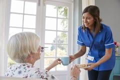 Nurse serving tea to senior woman at home, close up royalty free stock photo