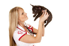 Nurse with small dog hold stethoscope side Royalty Free Stock Photos