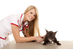 Nurse with small dog listen with stethoscope Royalty Free Stock Images
