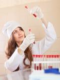 Nurse works with blood sample Stock Image