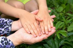 Nurseries and adult hands Stock Photo