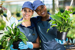 Nursery co-workers flowers Stock Image