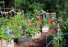 Nursery di sig. Bloom fotografie stock libere da diritti