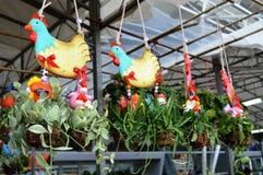 Nursery - Hanging Plants Royalty Free Stock Photos