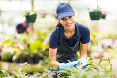 Nursery worker gardening Stock Images