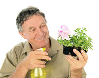 Nurseryman Sprays Seedlings Royalty Free Stock Image