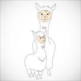 Nursing Animal Cartoon Stock Photo