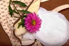 Nursing bra for mothers. moms bra with new disposable breast pad. Prevents the flow of milk on the clothes. aster flower Royalty Free Stock Photo