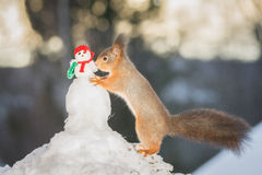 Nursing snowman Royalty Free Stock Photos