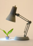Nurture. Littlelamp nurtures a plant by providing light for it to grow stock photo