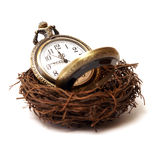 Nurture Your Time. A concept of nurturing time as a valuable asset stock photo