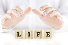Nurturing hands of a man cupped over the word Life stock photos