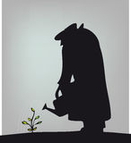 Nurturing plant. Silhouette of person watering plant Stock Photography