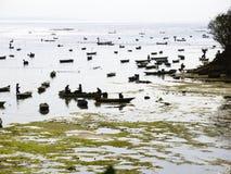 Nusa Ceningan sea weed collectors Royalty Free Stock Photo