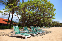 Nusa Dua Beach, Bali. A number of empty plank beds under trees on a beach Royalty Free Stock Images