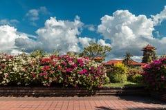 Nusa Dua kurort w Bali Indonezja - natura kwitnie tło fotografia royalty free