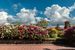 Nusa Dua resort in Bali Indonesia - nature flowers background royalty free stock photography