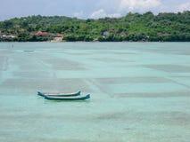 Nusa lembongan havsväxtlantbruk i Bali royaltyfria bilder