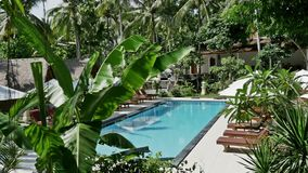 Nusa Penida Palm Resort Pool Island Indonesia 4k. Footage of a beautiful resort full of palm trees. Shot in 4k stock video