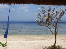 Nusa Penida plaża Obraz Royalty Free