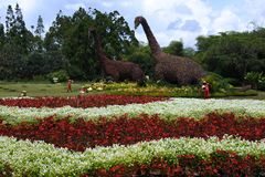 Nusantara blommaträdgård arkivfoto