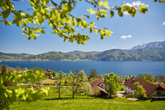 Free Nussdorf At Lake Attersee With Meadows And Mountains Stock Photos - 70933323