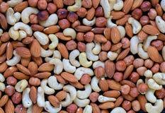 Nussfotohintergrund Acajoubaum, Mandel, Haselnussmischungsnahaufnahme Rustikale Fahnenschablone des biologischen Lebensmittels Lizenzfreie Stockfotografie