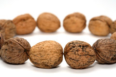Nut. Some brown nuts and a white background Stock Photo