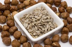 Nut. Sunflower seeds Royalty Free Stock Images