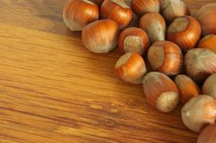 Nut Stock Image