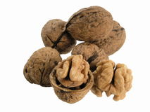 Nut stock photos