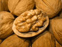 Nut. On center without peel Stock Photography