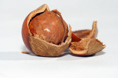 Nut. With the split shell. A white background. a filbert. Shell fragments Royalty Free Stock Photos