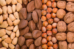 Nut arrangement Royalty Free Stock Images