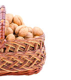 Nut in basket Royalty Free Stock Image