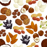 Nut, bean, seed, grain seamless pattern background Royalty Free Stock Photos