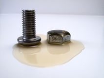 Nut And Bolt. In oil Stock Image