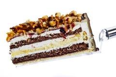 Nut-cake on cake shovel, close-up Stock Photos