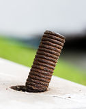 Nut on the cement Royalty Free Stock Image