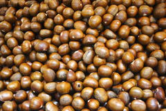 Nut. Chestnut fruit in Asia, Thailand Royalty Free Stock Image